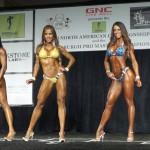 2015 IFBB North American Championships Bikini